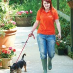 Off for a walk at The Kennels at Chevening